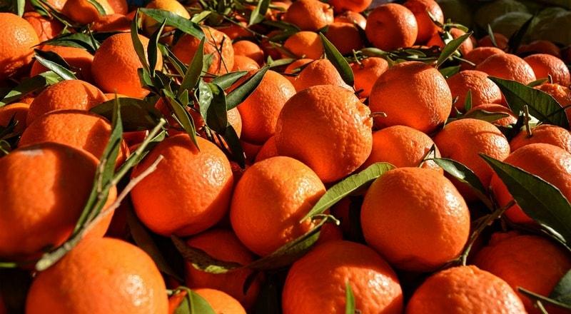 Vrednye_svoystva_apelsina_Вредные свойства апельсина