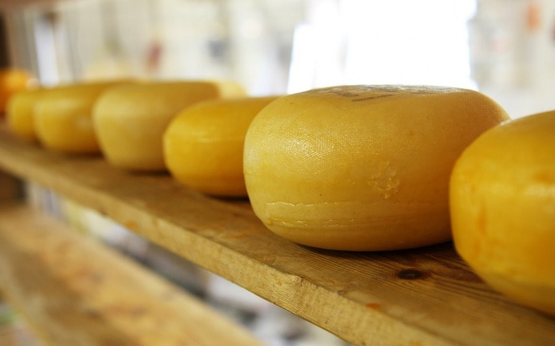 Kak_hranit_syr_Как хранить сыр