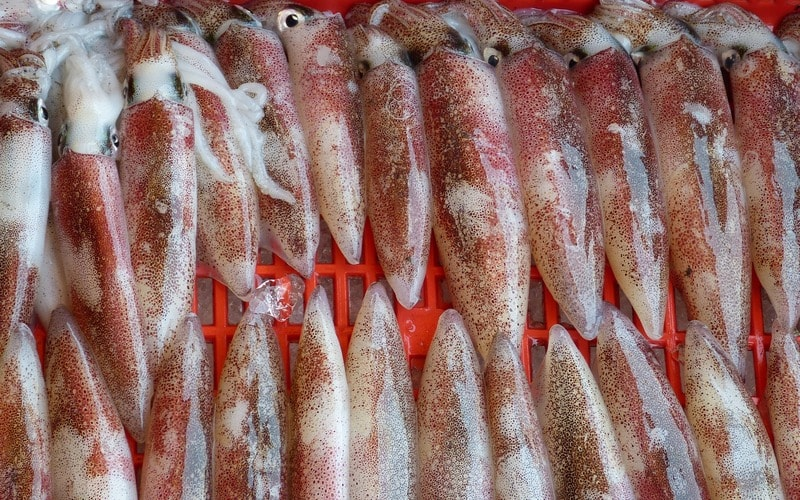 Kak_pochistit_kalmarov_Как почистить кальмаров от пленки