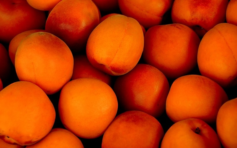 Kak_pravilno_est_abrikosy_Как правильно есть абрикосы