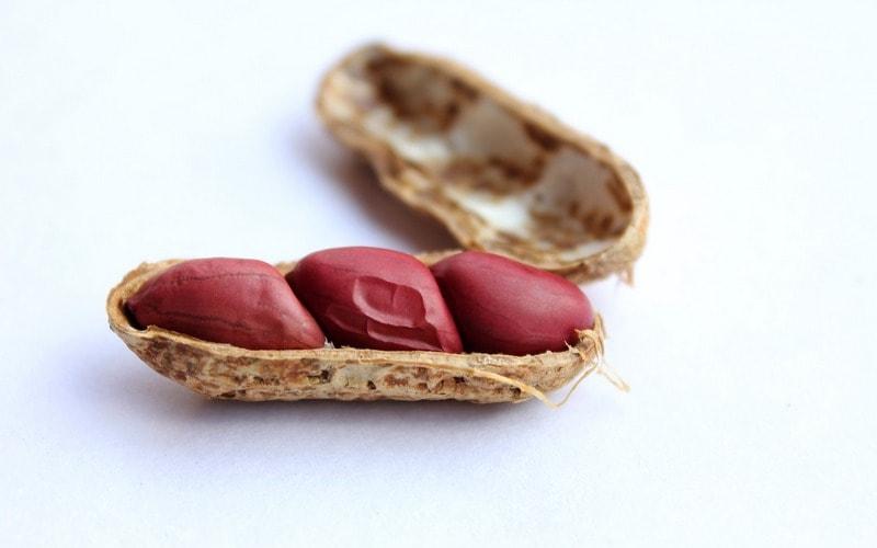 Polza_arahisa_dlya_zhenschin_Польза арахиса для женщин