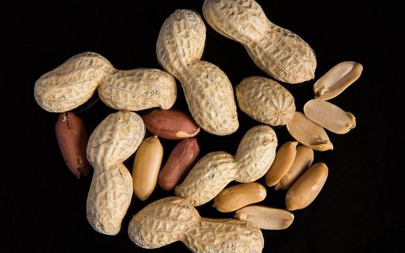 Vred_orehov_arahisa_Вред орехов арахиса