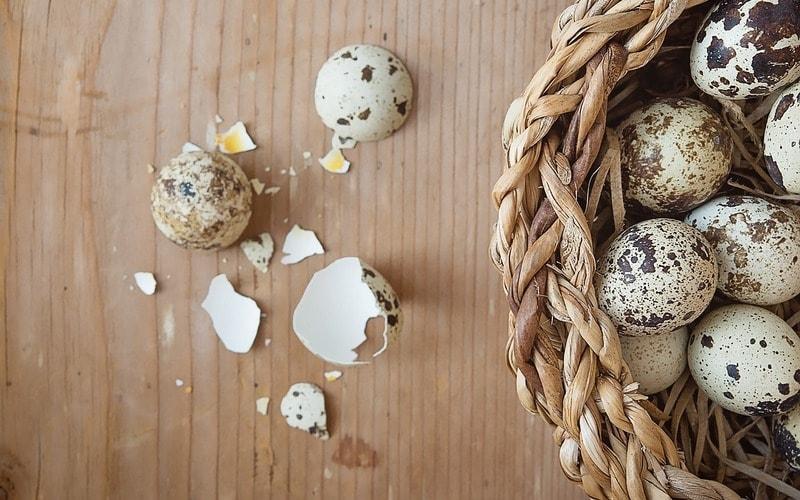 Polza_perepelinyh_yaic_dlya_zhenschin_Польза перепелиных яиц для женщин