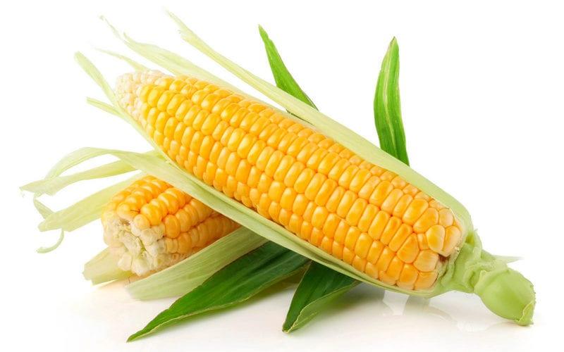 Как хранить кукурузу в початках дома