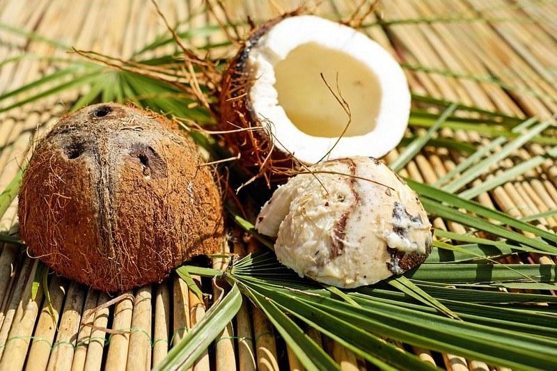 Вред кокосов для здоровья