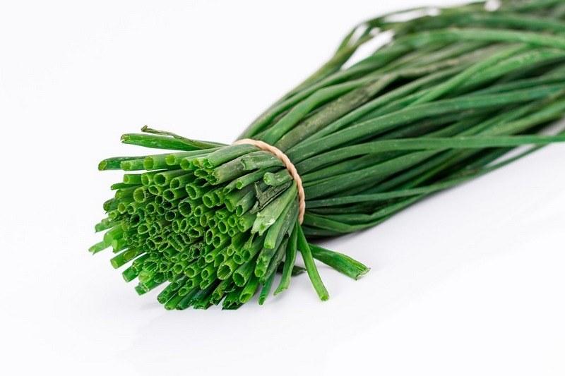 Вред зеленого лука для здоровья