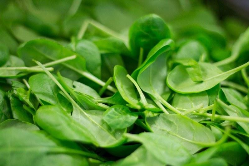 Чем полезен шпинат для организма человека