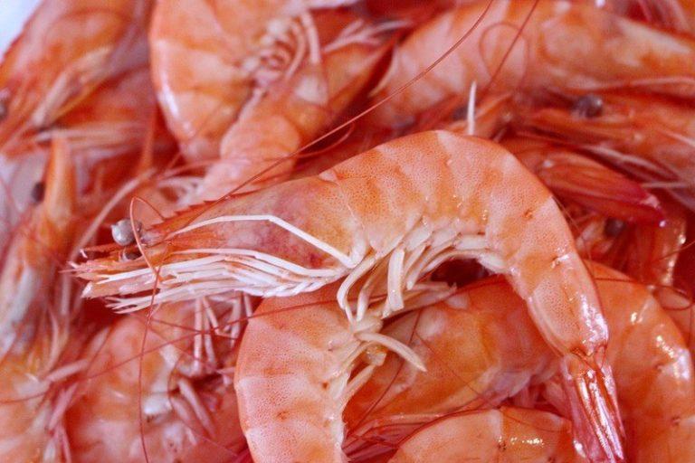 Креветки польза и вред холестерин