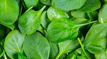Польза шпината для здоровья