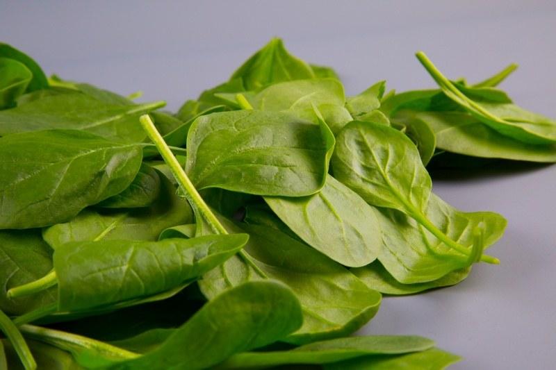 Вред шпината для здоровья