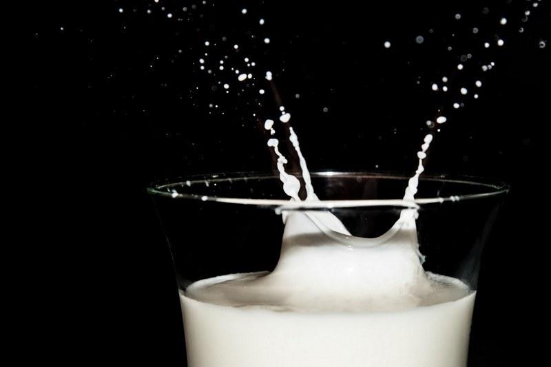 Вред молока для организма