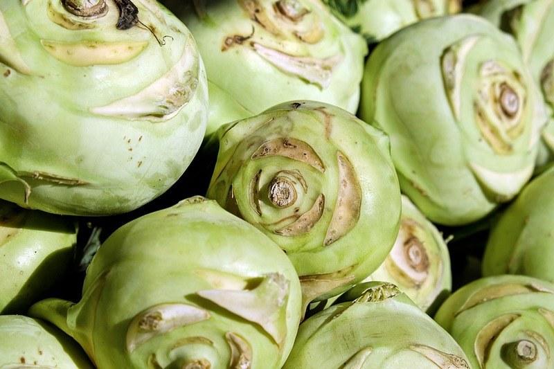 Вред капусты кольраби