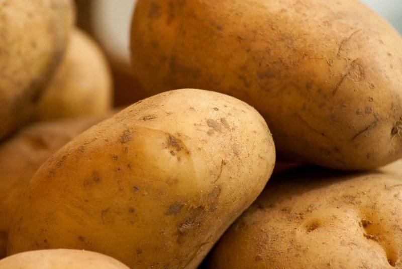 Вред картошки для организма