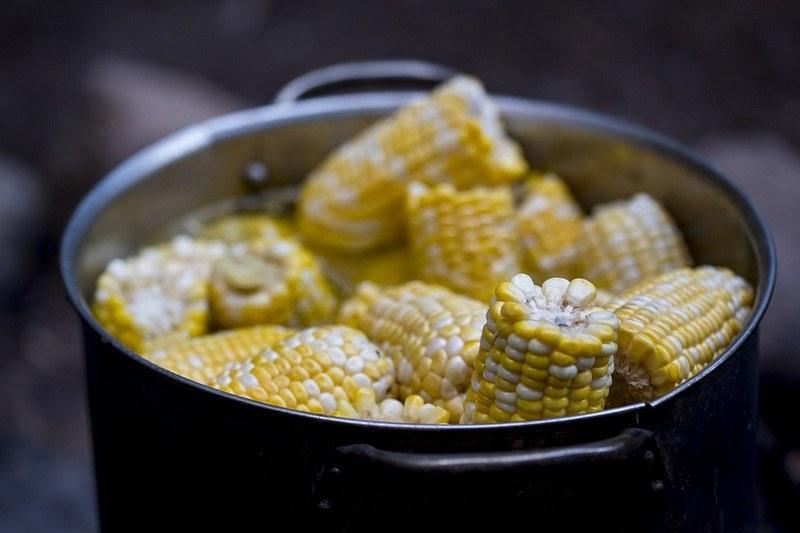 Вред кукурузы для организма