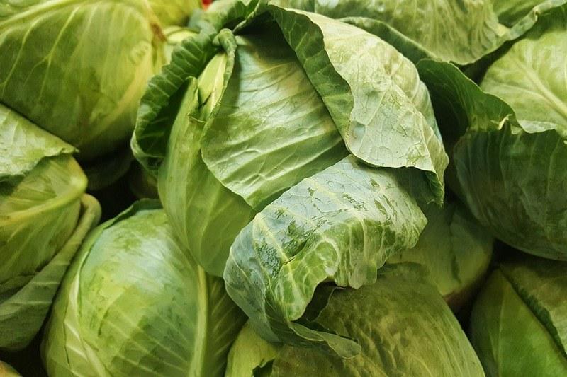 Как хранить капусту белокочанную