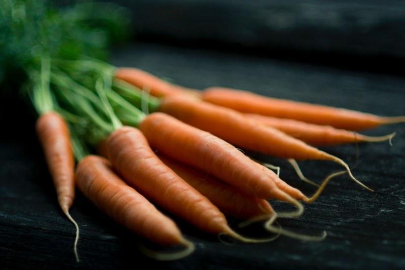 Польза морковки для организма