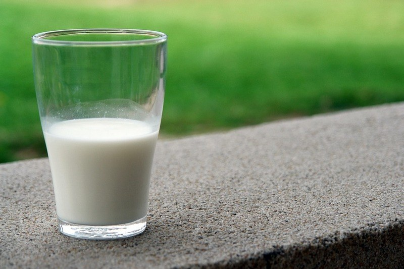 Вред козьего молока для организма