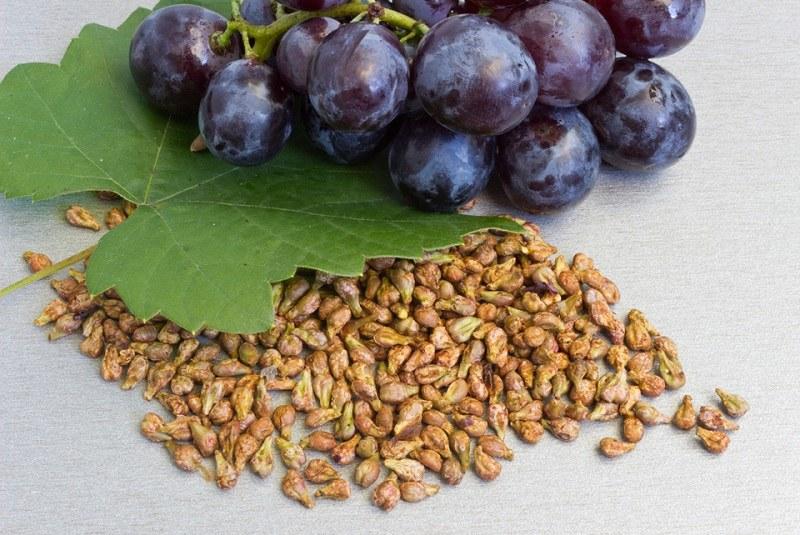 Применение виноградного масла