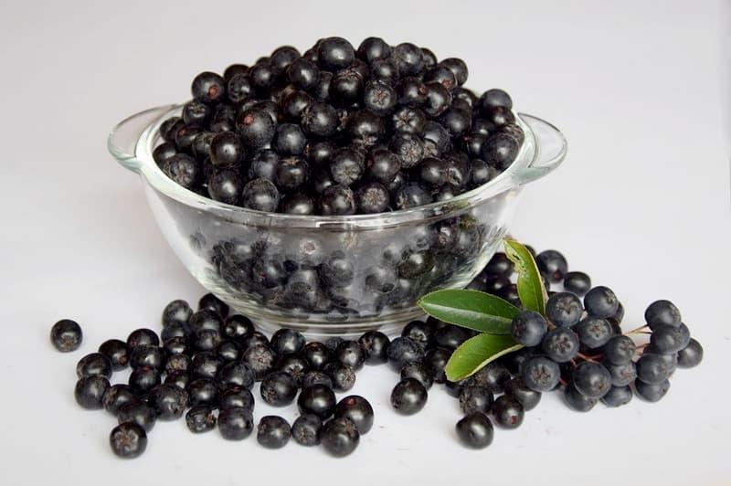 Лечебные свойства черноплодной рябины аронии