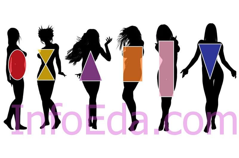 Типы фигуры женщин и девушек