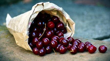 Вишня - фрукт или ягода