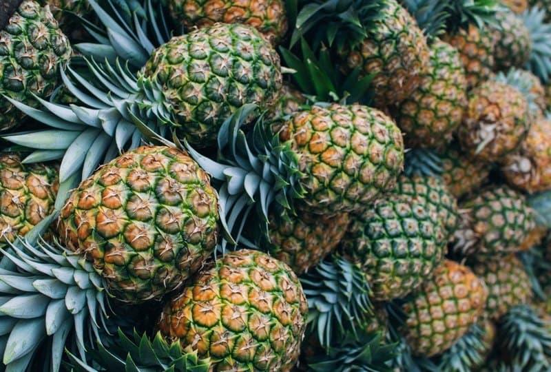 Ананас - это фрукт или трава