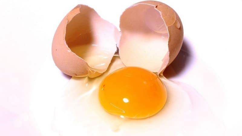 Масса яичного белка, желтка и скорлупы